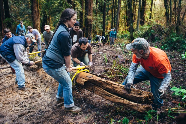 Dennis Houghton directs Naomi Winger, John Cortenbach, Rees Hughes, Alex Orozio, Zachary Matthews, Dan Calderwood and Joshua Sears as they move a fallen tree to block access to the discontinued trail. - BEAU SAUNDERS