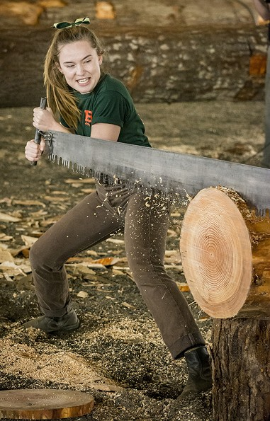 HSU Soils and Range Management major Sierra Berry, of Sacramento, handled her end of a two-person crosscut saw in the Lumberjack & Jill Show on Friday. - PHOTO BY MARK LARSON