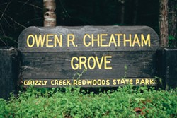 Cheatham Grove - PHOTO BY LEÓN VILLAGÓMEZ