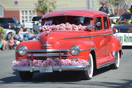 A flower festooned Ford rolls through town. - MARK MCKENNA