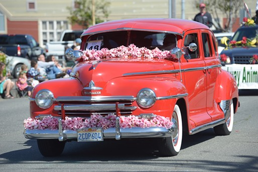 A flower festooned Ford rolls through town. - MARK MCKENNA