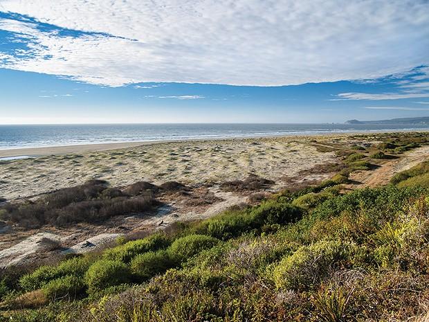 Best Parking Lot: Clam Beach Vista Point - PHOTO BY GREG NYQUIST