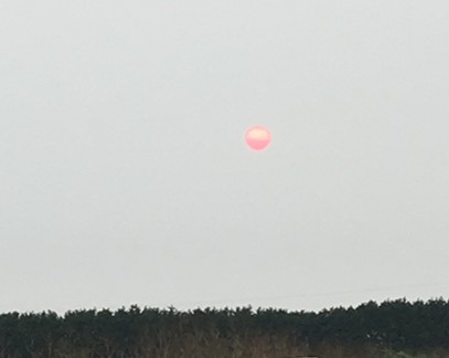 The red, smoke-filtered sun over the Arcata Bottoms. - THADEUS GREENSON