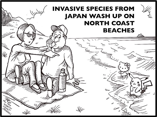 Invasive species from Japan wash up on North Coast beaches. - TERRY TORGERSON