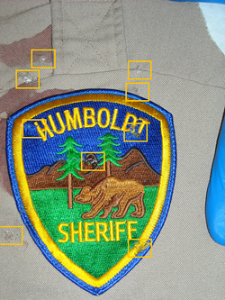 The marks on the deputy's uniform post-incident. - HCSO