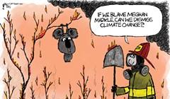 If we blame Meghan Markle...