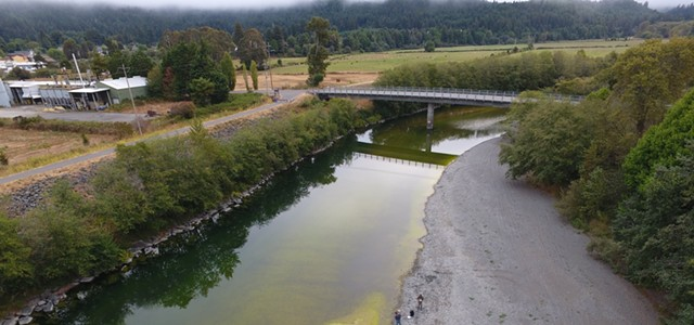 Blue-Green Algae Found in Mad River