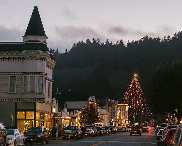 ferndale_holiday_christmas_tree_lighting.jpeg