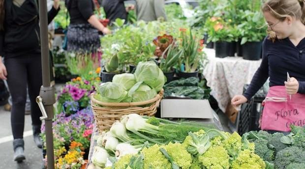 dsc_0612_arcata-farmers-market.jpg