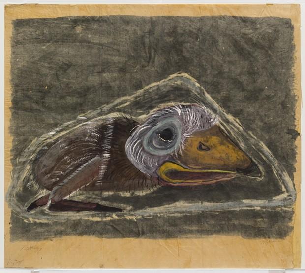 Nestling (1940) by Morris Graves – MoMA
