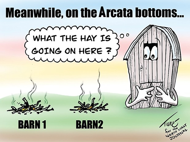 Meanwhile, on the Arcata Bottoms