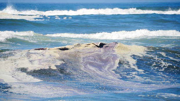 Purple surf at Mad River Beach.