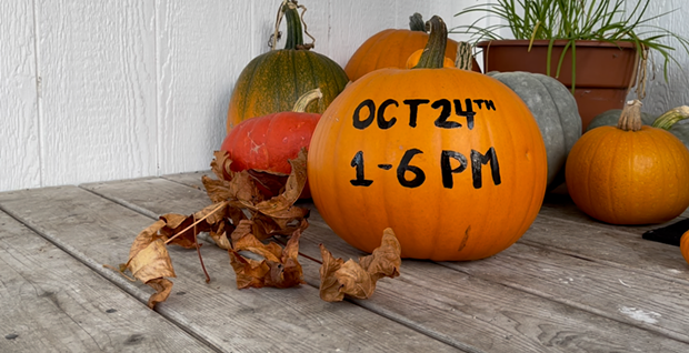 Pumpkin Crafts at the Tap Room