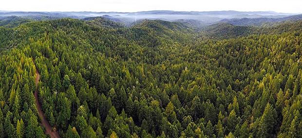 The 1,300 acre Van Arken watershed.