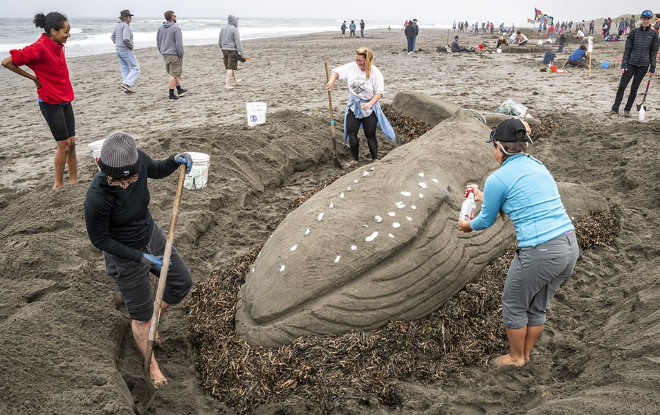 "The Best of Show sand sculpture ""Tale of the Plastic Whale,"" neared completion with the help of Northcoast Environmental Center volunteers Taylor Zenobia (left), Casey Cruikshank (right) and NEC Coastal Program Coordinator Madison Peters. - PHOTO BY MARK LARSON"