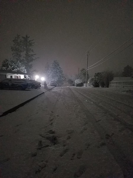 Snow falls in McKinleyville. - KALI COZYRIS