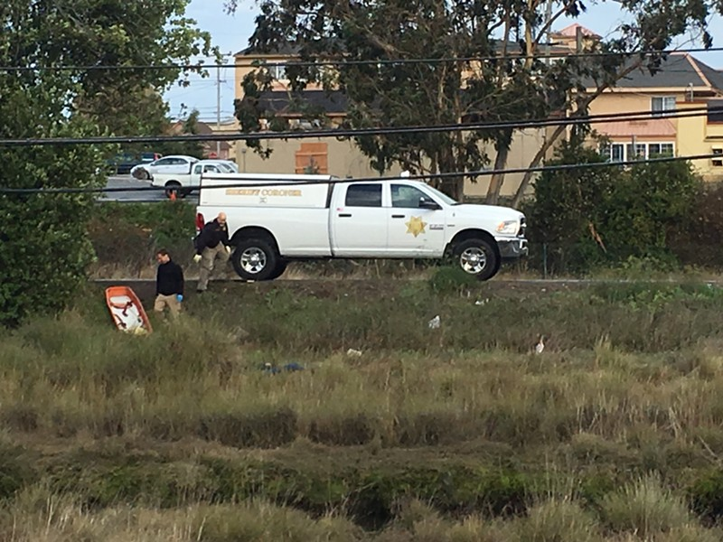 The Humboldt County Coroner's Office at the scene. - THADEUS GREENSON