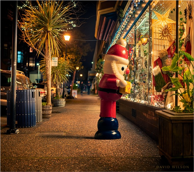 It certainly looked a lot like Christmas in Old Town, Eureka. I'd gone down to photograph some nighttime holiday lights, and what should happen by but a wooden Santa ornament.  It hobbled stiffly out of the store as if nothing were amiss, and I swear I heard it muttering about the Christmas rush. Then he paused to peer into the window display at Many Hands Gallery, cocking his wooden head from side to side on his stocky neck. Suddenly he chuckled, threw me a wink, and scuttled quickly back inside. - DAVID WILSON