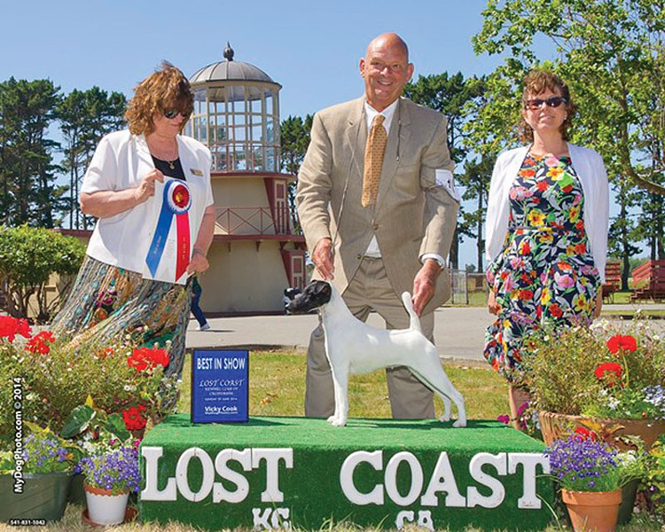 PHOTO BY WARREN COOK, COURTESY OF LOST COAST KENNEL CLUB