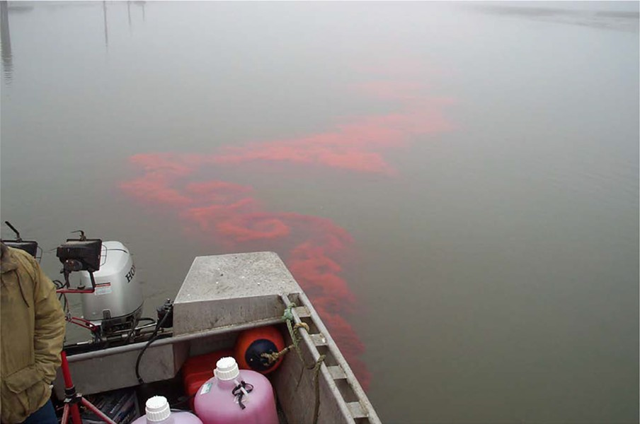 Scientists will use a nontoxic red dye to track the movement of wastewater in Humboldt Bay. - COURTESY OF HUMBOLDT COUNTY DIVISION OF ENVIRONMENTAL HEALTH