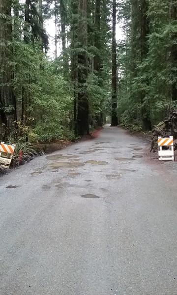 Potholes, beware! - LINDA STANSBERRY