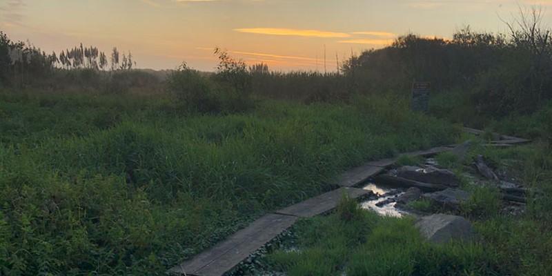 The muddy path to Clam Beach just before dark.