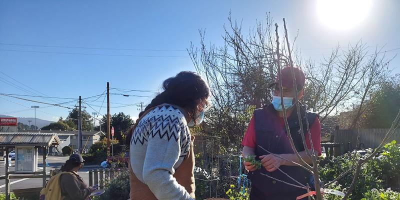 Brenda Perez with Adan Cervantes Perez at a community garden.
