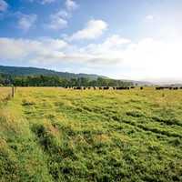 """After concerns were raised, a new re-zoning process will take place, include for ag and """"Unclassified"""" land."""