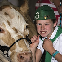 Proud 4-H kid Jocie Hague with her prize cow at the Humboldt County Fair. The Redwood Acres Fair, which also features 4-H and FFA animals, is canceled for 2020.
