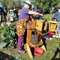 Sara Borok masked and pressing apples on her hand-cranked press.