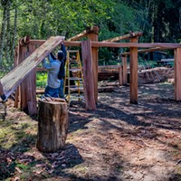 Senior Park Aide Jake Reed (left) and Yurok Trail Crew members Napooi Shorty and Michael Wolf (partially hidden) lift the first of the new roof planks onto the framework of the new women's Dressing House. Photo by Mark Larson