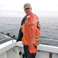 Les Whitehurst landed this nice vermilion rockfish while fishing near Cape Mendocino last Thursday with Tim Klassen aboard the Reel Steel.