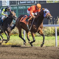Racing at the 2019 Humboldt County Fair.
