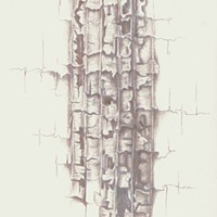 """The glowing, silvery lines of Jeannine Cook's """"Ligneous Connections."""""""