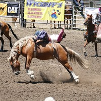 Fortuna Rodeo action