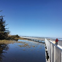 The newly-opened Eureka Waterfront Trail