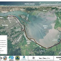 Trail Lovers Invited to Chime In About Bay Trail Progress