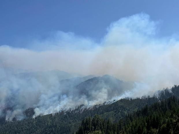 Smoke from the McCash Fire. - U.S. FOREST SERVICE