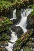 Trillium Falls.