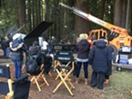 The crew at work in Sequoia Park.