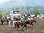 Riders warm up their horses for the slack roping.