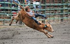 Remy George, 4, competes in the calf riding.