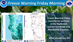 Freeze Warning Friday Morning