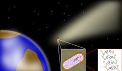 Panspermia and SETI