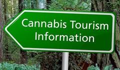 Cannabis Convention and Visitors Bureau?