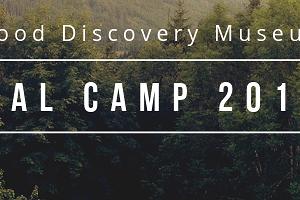Pal Camp 2019