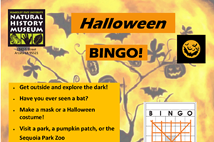 Natural History Museum Halloween Bingo