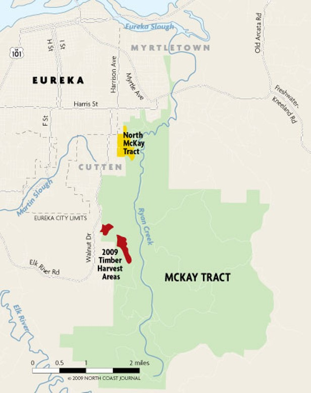 The McKay Tract