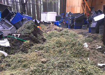 UPDATE: 'Most Bud I Have Ever Seen in One Place,' Officer says of 16K Pound Bust
