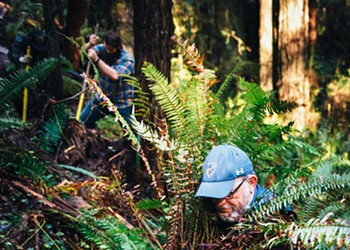 Discontinuing a Trail in Arcata's Community Forest